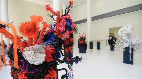 Crochet Coral Reef On Display At Nyu Abu Dhabi