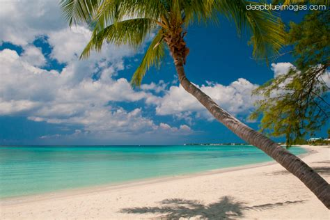 Island Images - Grand Cayman Photography | Deep Blue Images