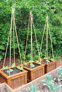 Diy, Planter, Boxes