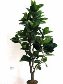 artificial trees and plants artificial topiary trees artifical topiary plants artificial