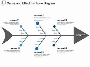 Cause And Effect Fishbone Diagram