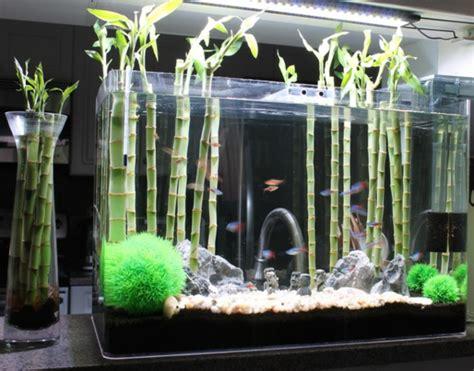 aquarium meuble dans la deco archzinefr
