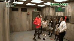 japanese game show gifs weird japan gifs