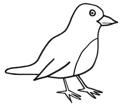 Robin Bird Coloring Pages - Democraciaejustica