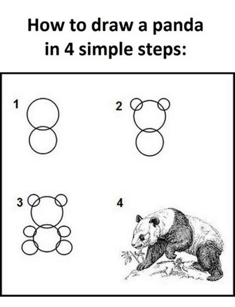 How To Draw Meme - how to draw a panda in 4 simple steps panda meme on me me