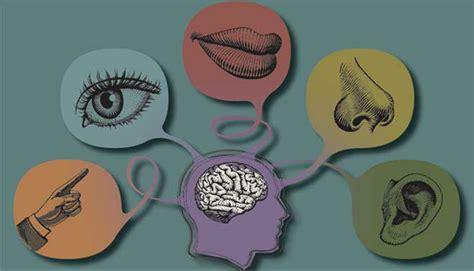centro studi delacato terapie sensoriali  autismo  dislessia