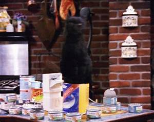 Sabrina The Teenage Witch GIF - Find & Share on GIPHY