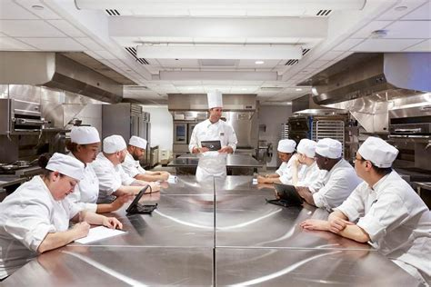 york campus institute  culinary education