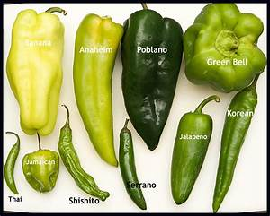 """""""Some like it Hot"""" A Hot Pepper that is   Find Out Why ..."""