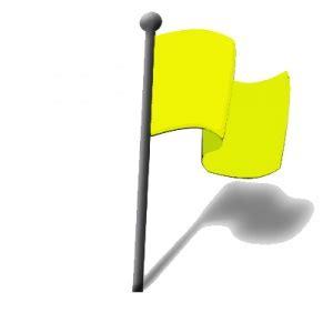 flag system physiopedia