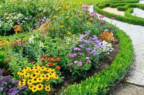 Bienenfreundliche Pflanzen Eine Pracht Für Bienen, Gärten