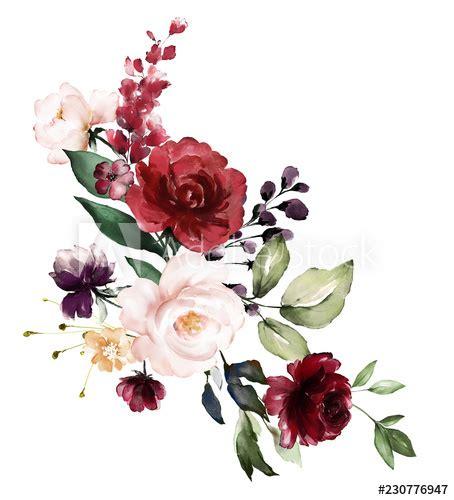 watercolor burgundy flowers floral illustration leaf