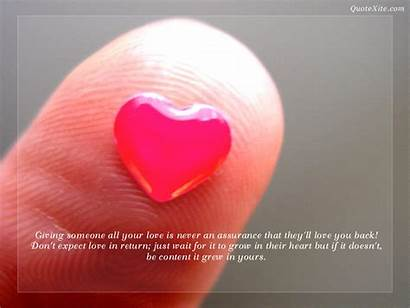 Fanpop Quotes Wallpapers Quote Heart Giving Never