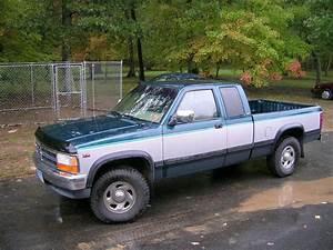Bholowaty 1995 Dodge Dakota Regular Cab  U0026 Chassis Specs