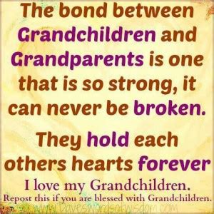 beautiful granddaughter quotes quotesgram