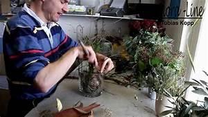 Amaryllis In Wachs Selber Machen : weihnachtsdekoration selber basteln amarylliszwiebel in glas ausgarnieren youtube ~ Orissabook.com Haus und Dekorationen