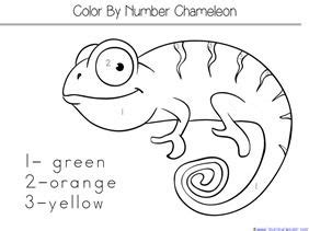 Chameleon Coloring Page Arenda Stroy