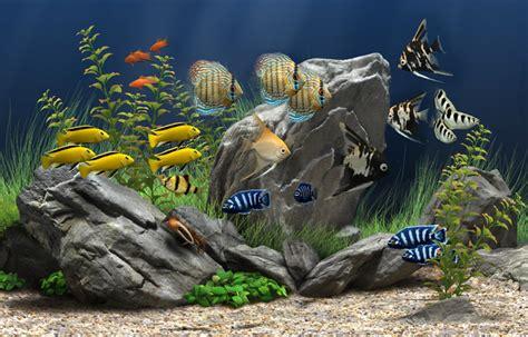 telecharger aquarium screensaver 1 52 gratuit