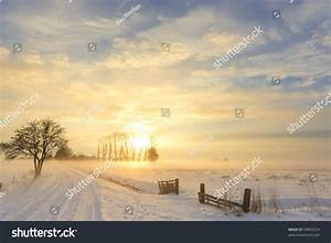 Beautiful Winter Landscape Sunset Fog Snow Stock Photo ...