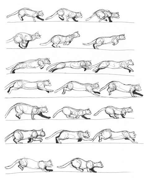 cat running  slowing   renegadestudiosdeviantart