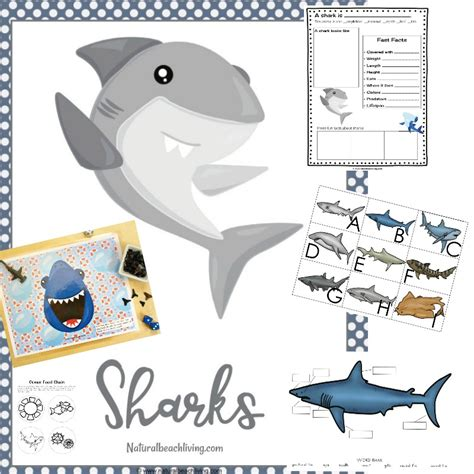 shark printable activities  kids shark