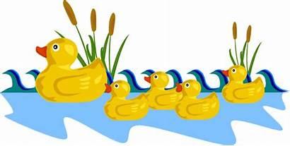 Duck Clipart Rubber Pond Ducks Swimming Clip