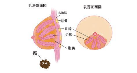 閉経 後 避妊