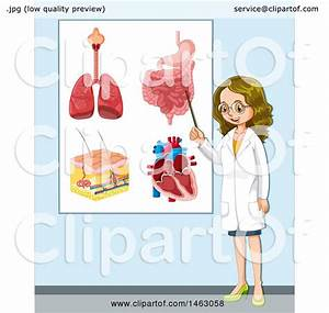 Clipart Of A Female Doctor By A Diagram Of Human Lungs