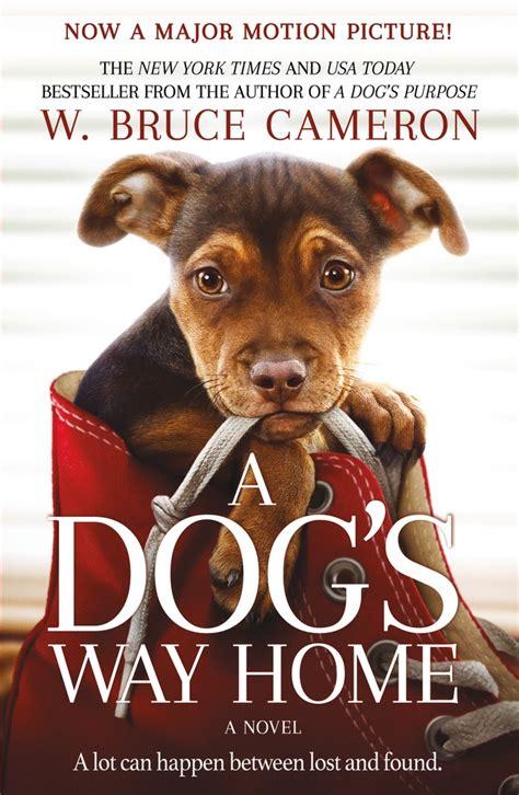rediscover  dogs  home shelf awareness