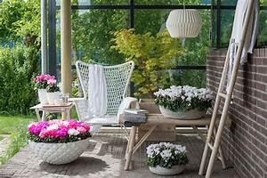 schone ideen fur eure herbstdeko auf terrasse und balkon With französischer balkon mit mini garten weihnachten