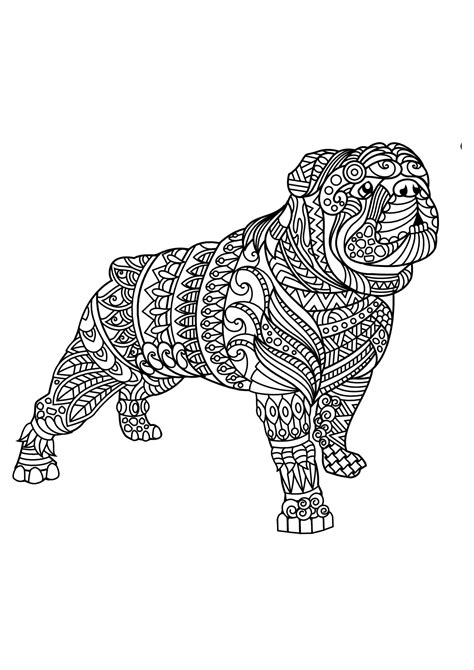 bulldog coloring pages  adults