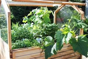 Gurken Im Hochbeet : mit dem hochbeet gem segenuss auf kleinstem raum ~ Orissabook.com Haus und Dekorationen