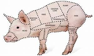 Pin On Pork