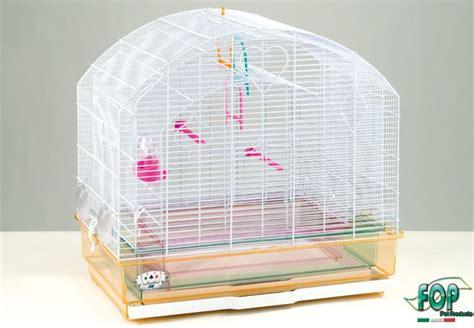 gabbie per pappagalli inseparabili offerte cuccioli comprando gli accessori e gli alimenti