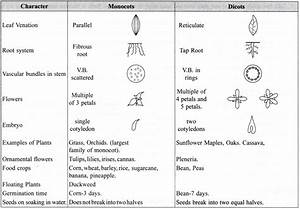 Ncert Class 9 Science Lab Manual