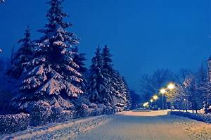 Image Gallery night winter landscape