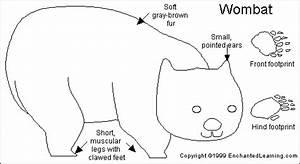 Wombat Printout