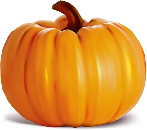 pumpkin images free pumpkin illustration free vector download 531 free vector for commercial use format ai eps