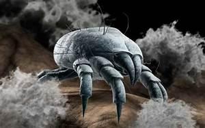 Was Tun Gegen Hausstaubmilben : allergien beseitigen hausstauballergie was tun der baktogreen genie spray kann ihnen helfen ~ Frokenaadalensverden.com Haus und Dekorationen