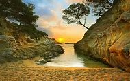 Beach Sunrise Landscapes