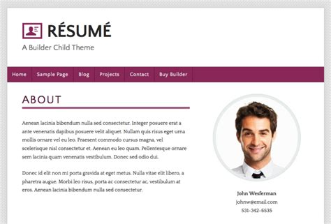 What Is The Definition Of Resume Padding by Builderchild Resume Ithemes Codex