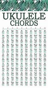 Ukelele Chord Chart Walrus Productions 8116 Mini Laminated