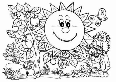 Coloring Nature Sun Pages Plants Printable Printables