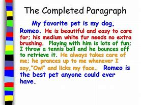 Essay My Pet Dog For Class 1 | Bestletters co