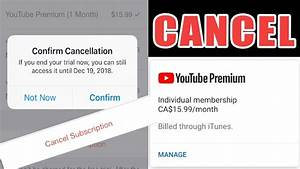How To Cancel Youtube Premium Account YouTube
