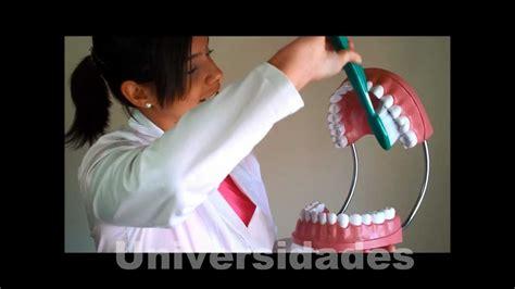 como hacer maqueta de la boca humana como hacer maqueta de la boca humana apexwallpapers