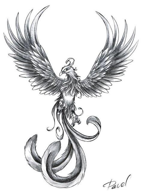 ideas  phoenix tattoos  pinterest