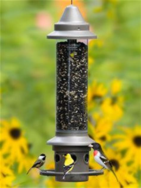 17 best ideas about anti squirrel bird feeder on pinterest