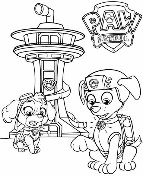 Skye and Zuma on Paw Patrol coloring pages for kids