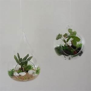 Plantes à Suspendre : mini bocal terrarium diy d co pour plantes en verre ~ Premium-room.com Idées de Décoration
